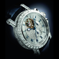 Picture for category Diamond Watches